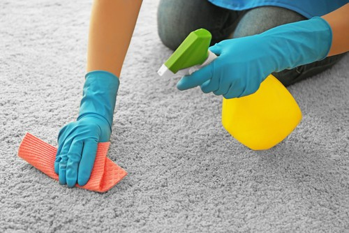 disinfect-your-carpet-regularly