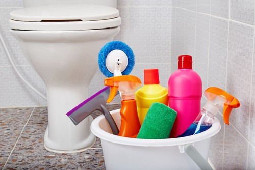 Toilet spring cleaning