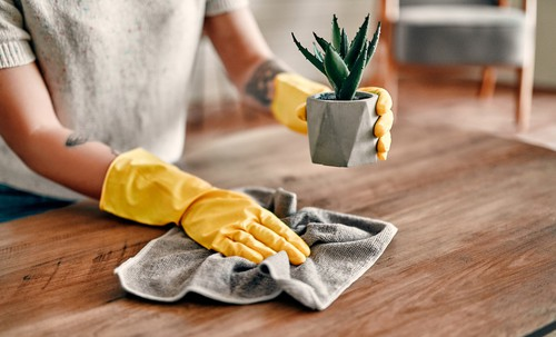 Wiping, cleaning and dusting